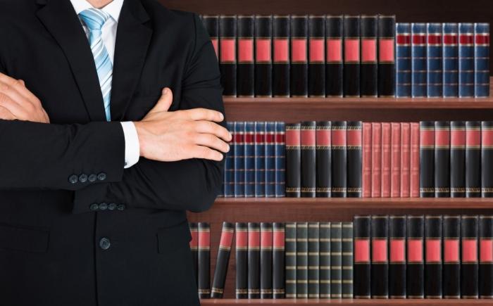 Профессиональный правозащитник